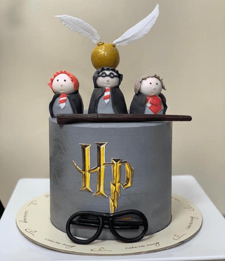 Divine Harry Potter Cake