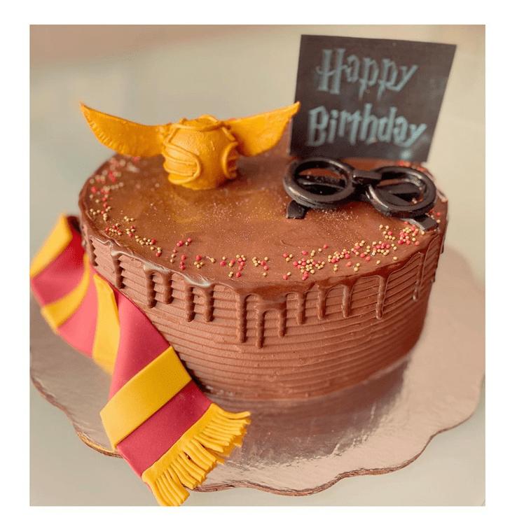 Exquisite Harry Potter Cake
