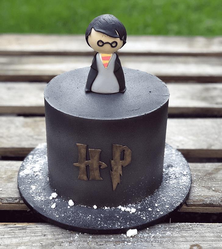 Fair Harry Potter Cake