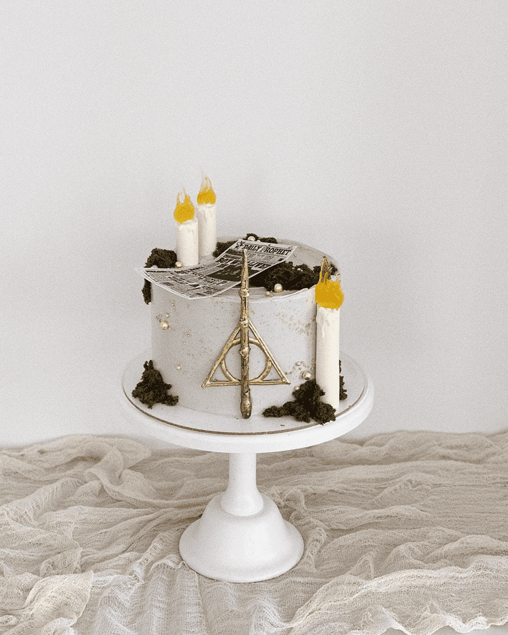 Good Looking Harry Potter Cake