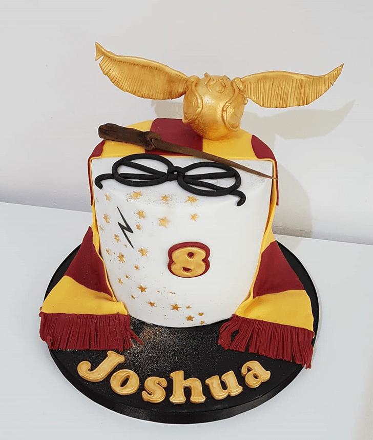 Handsome Harry Potter Cake