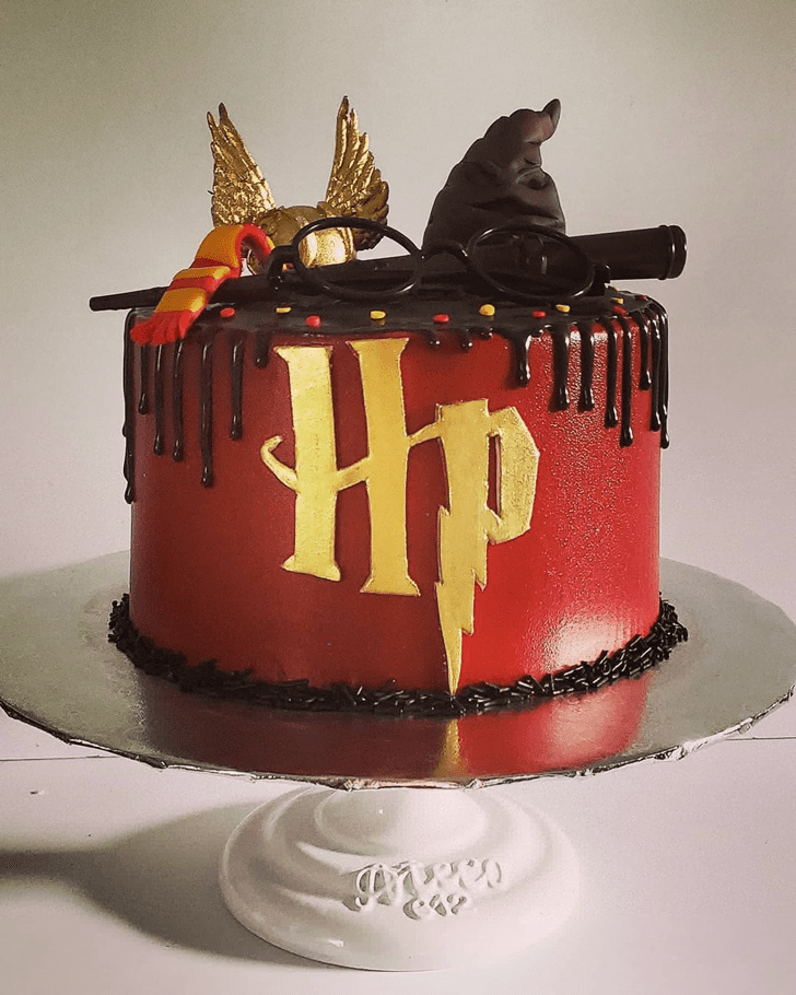 Magnificent Harry Potter Cake