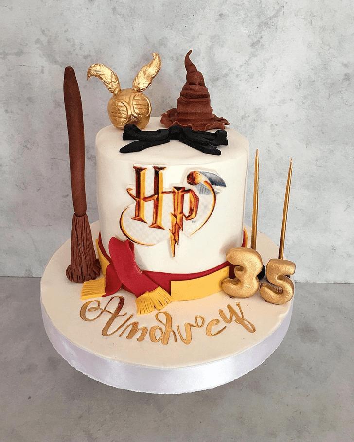 Mesmeric Harry Potter Cake