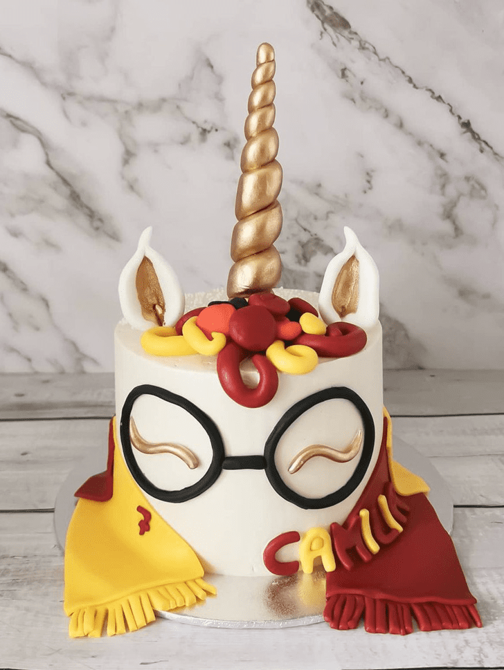 Refined Harry Potter Cake