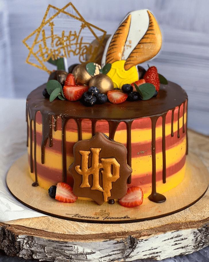 Splendid Harry Potter Cake