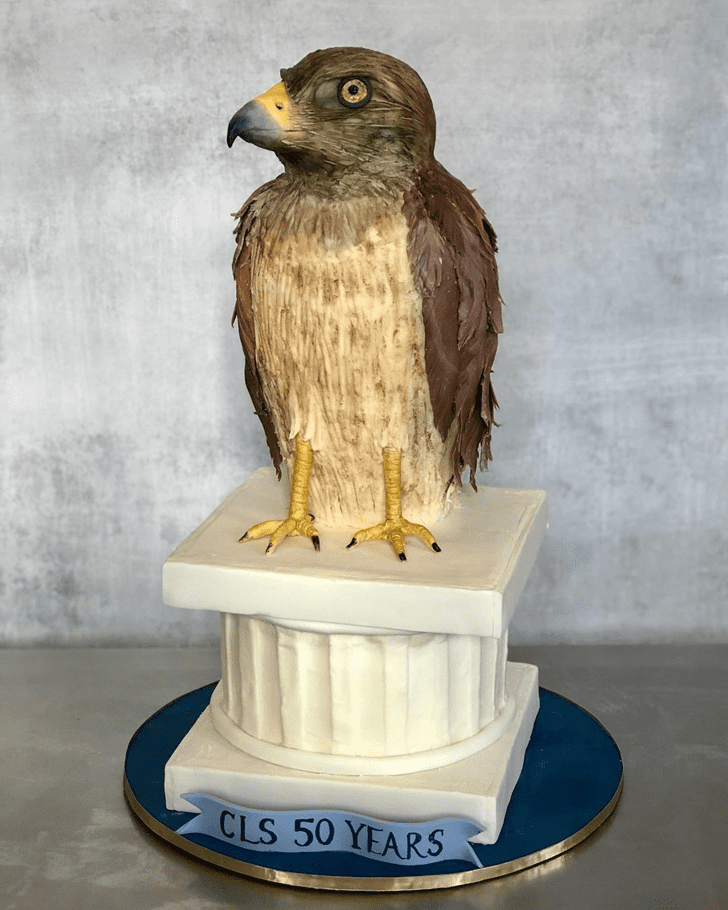 Angelic Hawk Cake