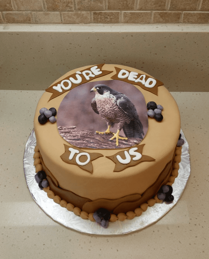 Bewitching Hawk Cake