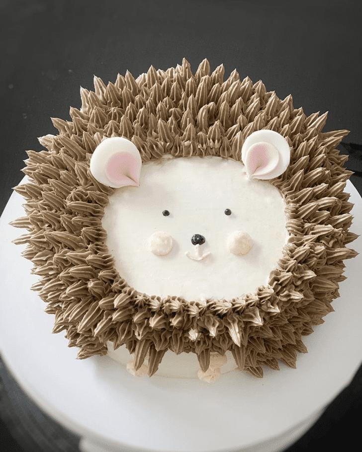 Lovely Hedgehog Cake Design