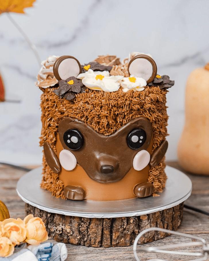 Magnetic Hedgehog Cake