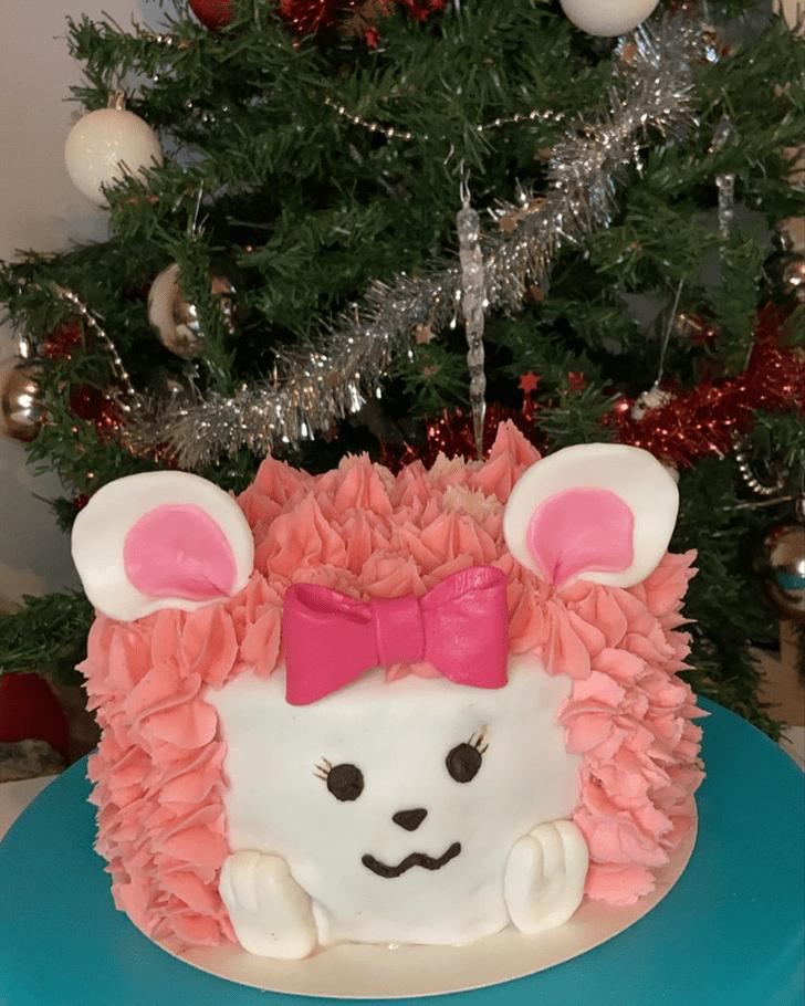 Resplendent Hedgehog Cake