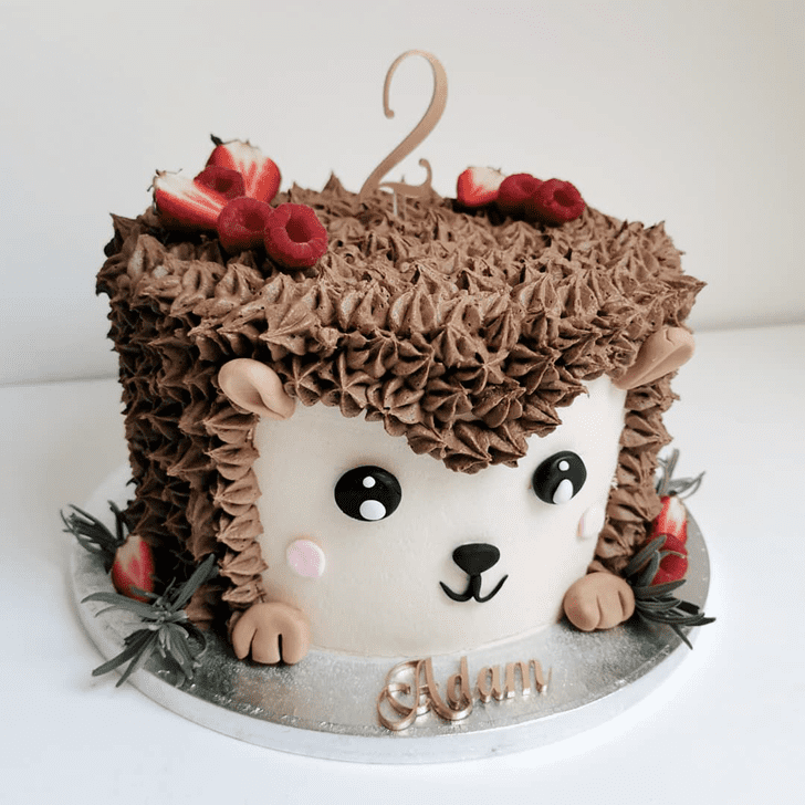 Stunning Hedgehog Cake