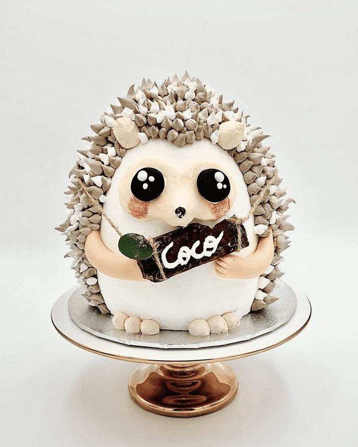 Wonderful Hedgehog Cake Design