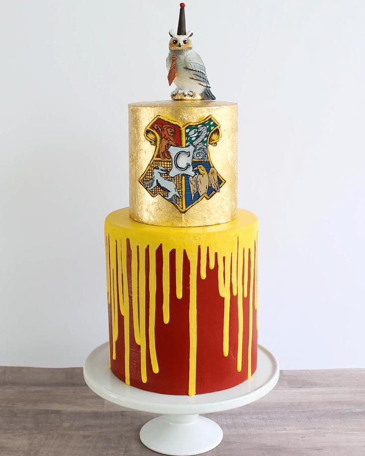 Comely Hogwarts Cake