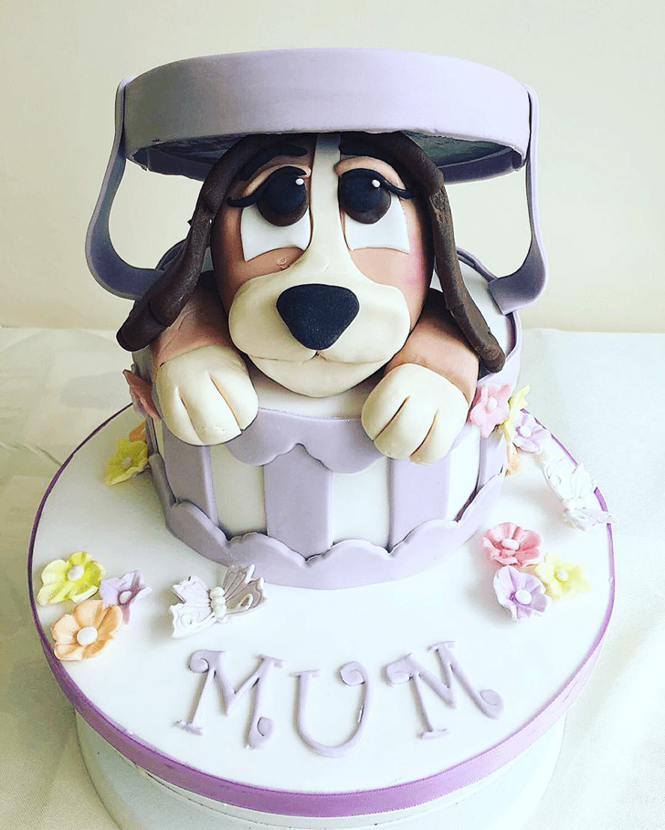Mesmeric Lady and the Tramp Cake