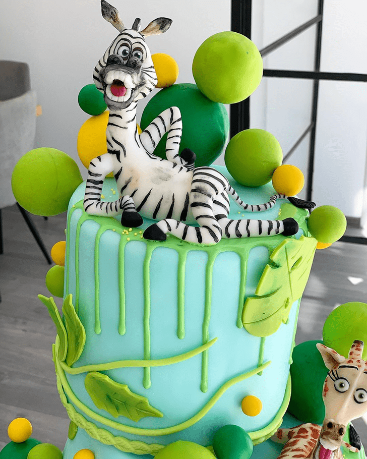 Good Looking Madagascar Cake