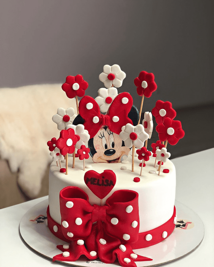 Magnetic Micky Mouse Cake