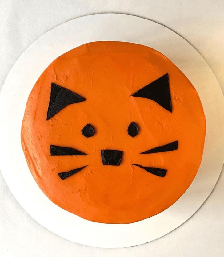 Splendid Orange Cake