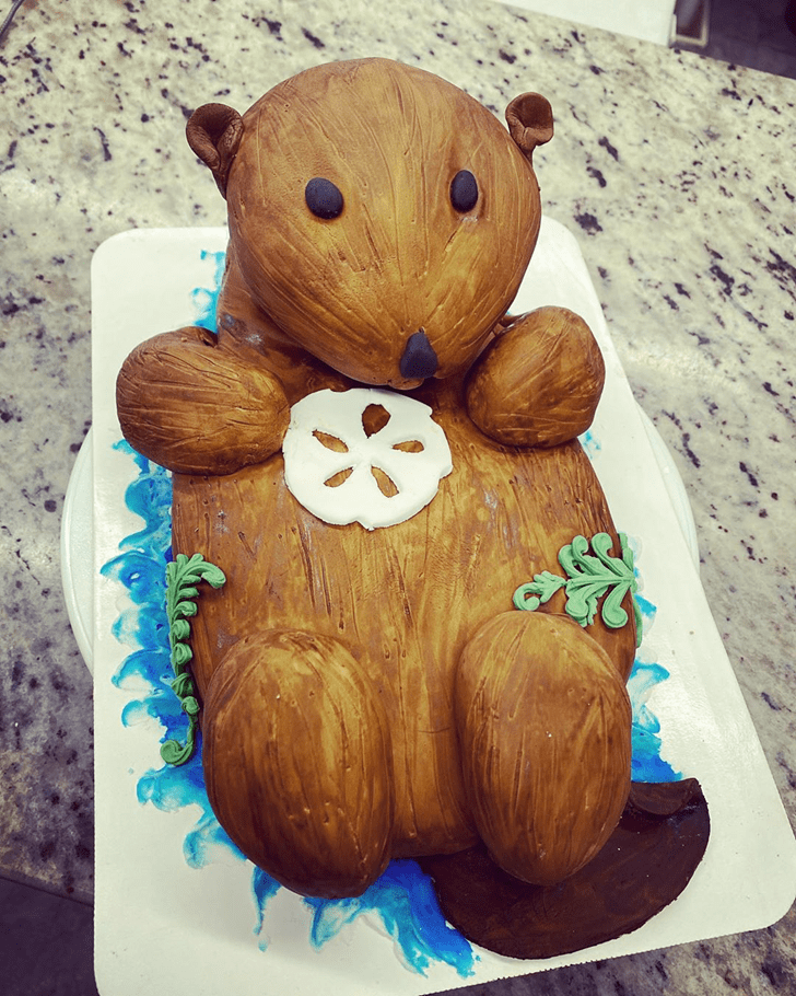 Dazzling Otter Cake
