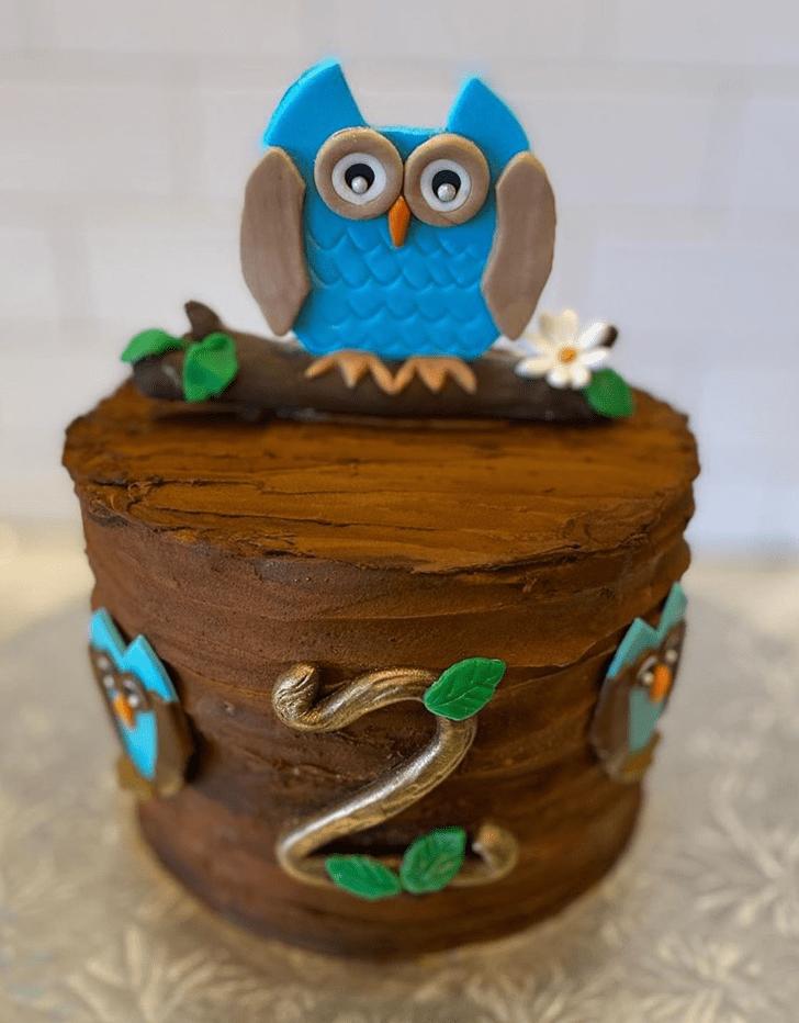 Admirable Owl Cake Design