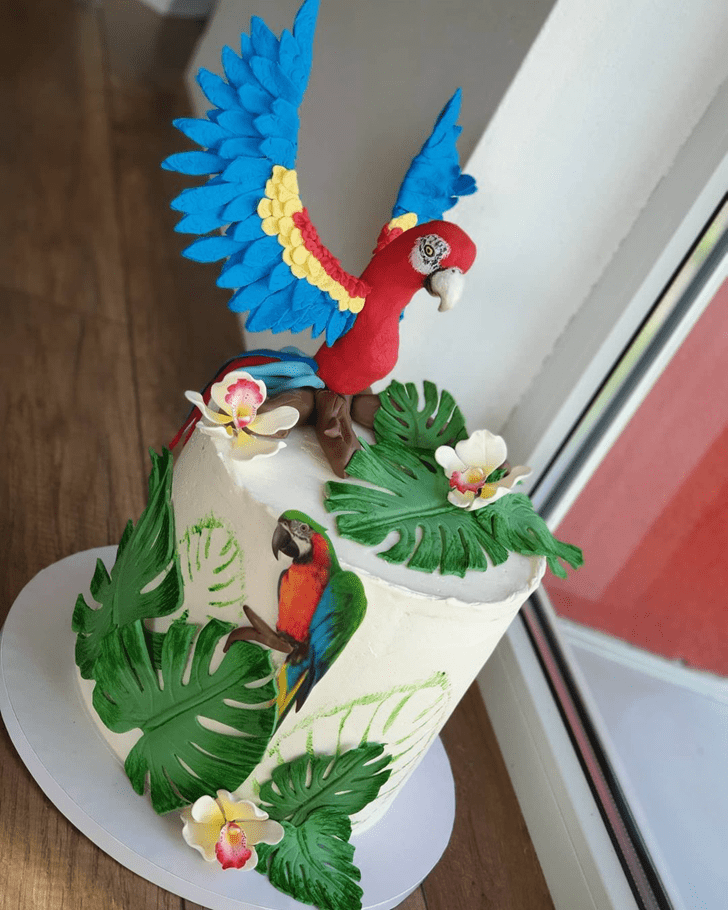 Comely Parrot Cake