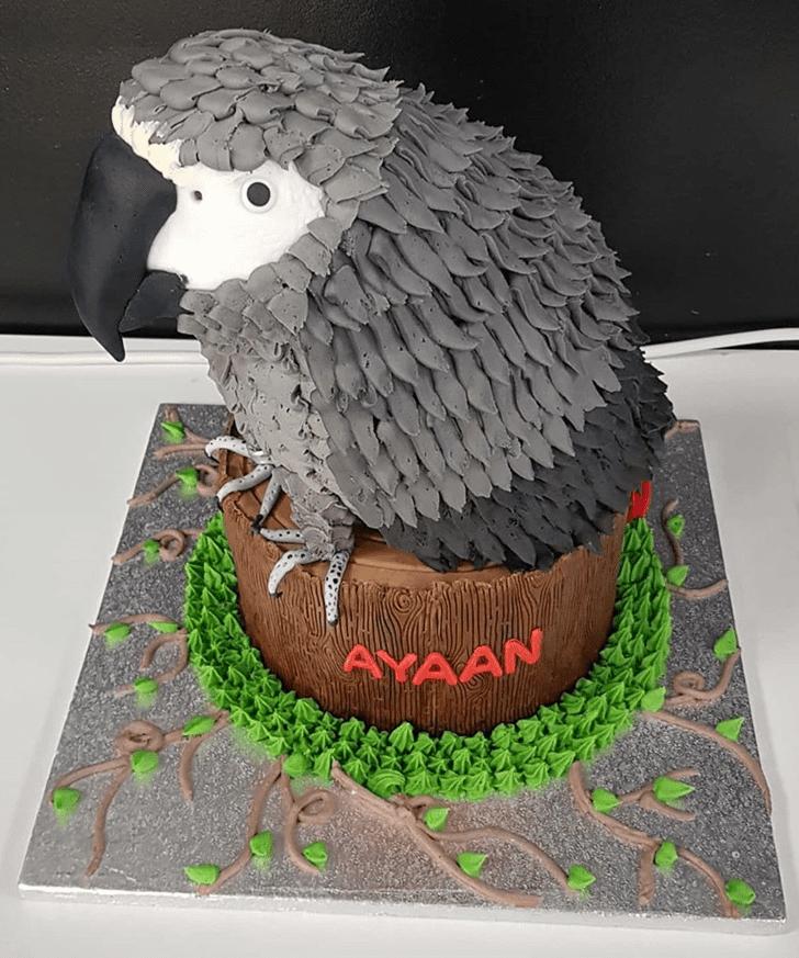 Dazzling Parrot Cake