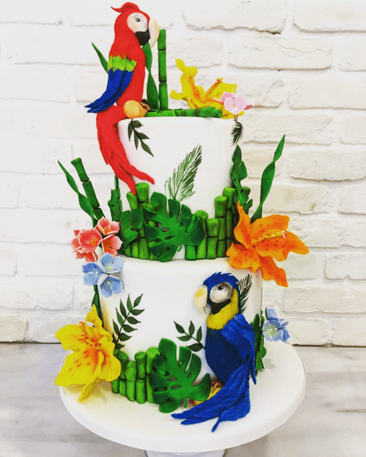 Ideal Parrot Cake