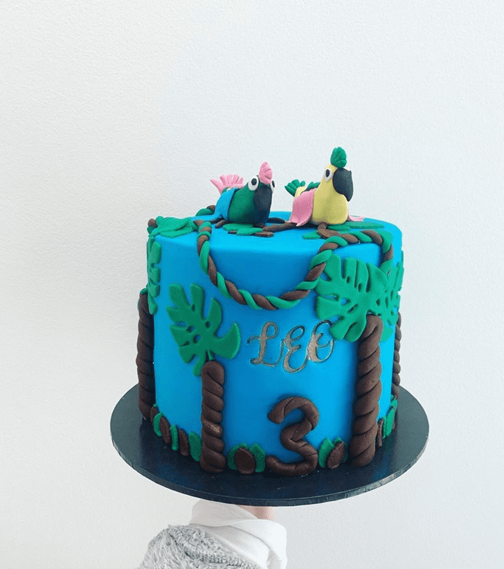 Magnetic Parrot Cake