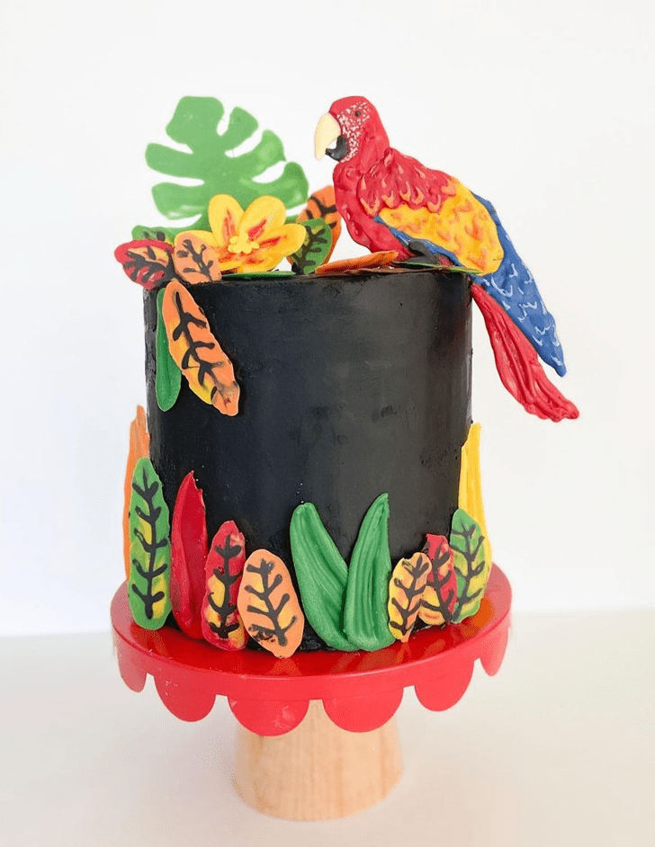 Nice Parrot Cake