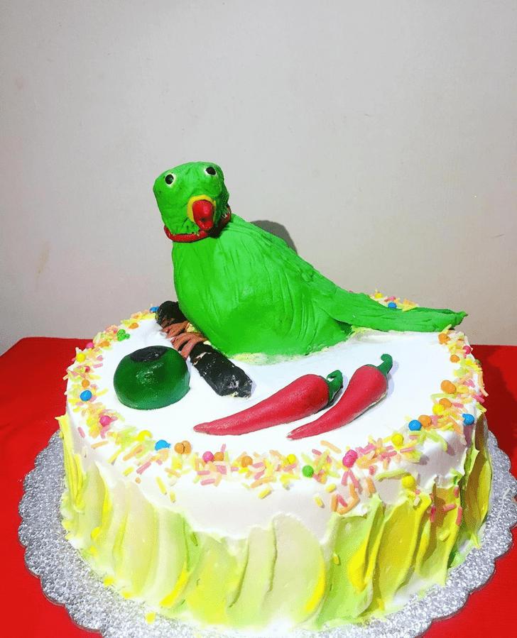 Pretty Parrot Cake