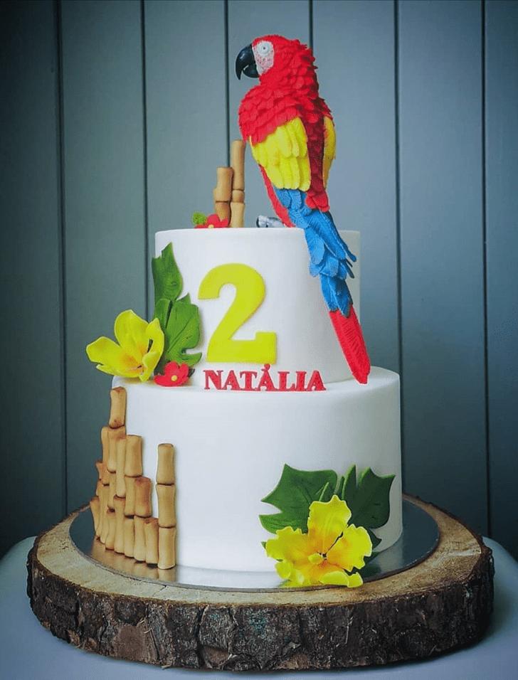 Slightly Parrot Cake