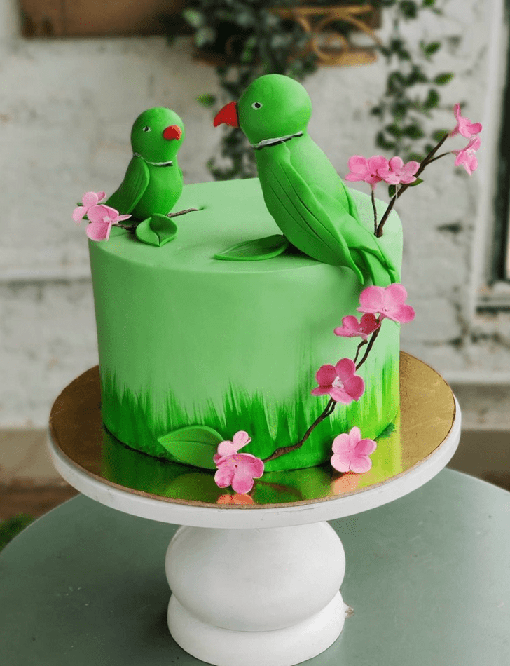 Superb Parrot Cake