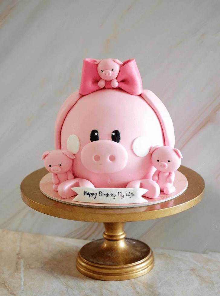Magnetic Pig Cake