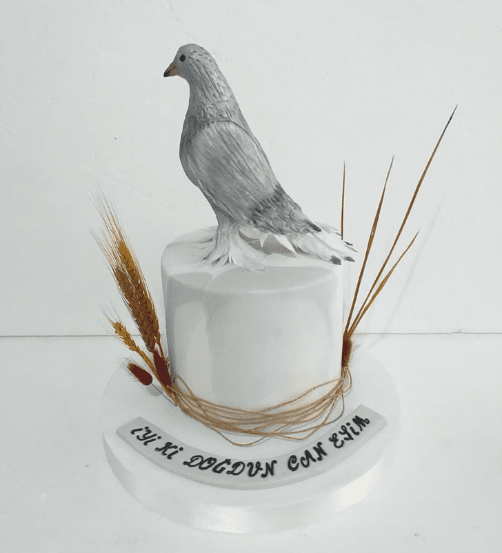 Appealing Pigeon Cake