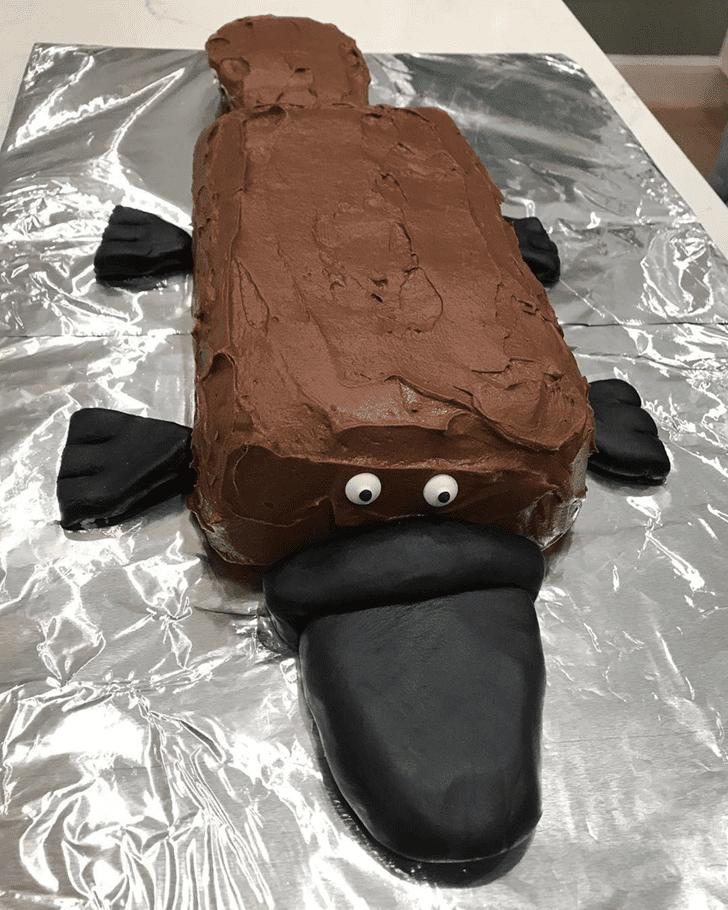 Delicate Platypus Cake