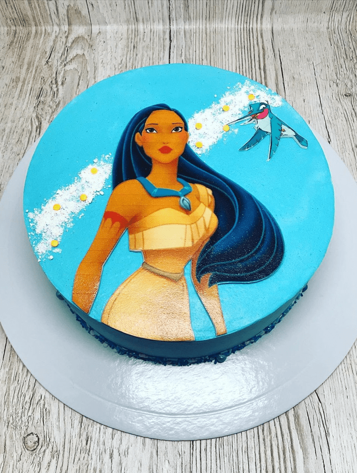 Cute Pocahontas Cake