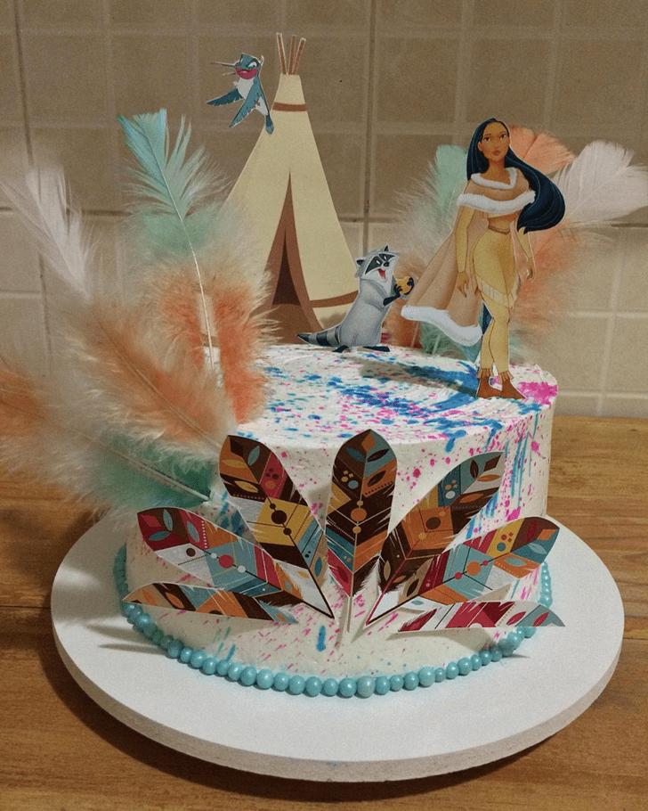 Elegant Pocahontas Cake