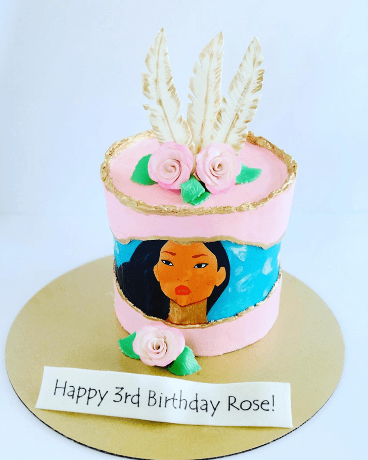 Handsome Pocahontas Cake