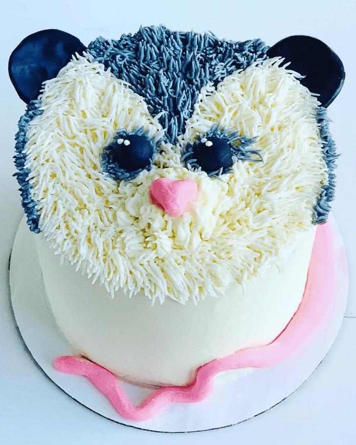 Admirable Possum Cake Design