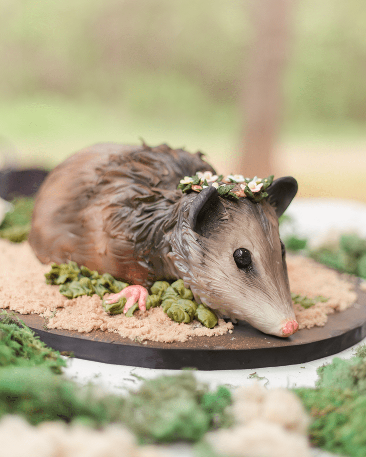 Captivating Possum Cake