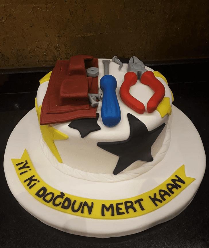 Beauteous Repair Man Cake