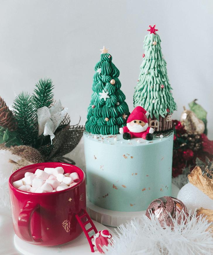 Beauteous Santa Cake
