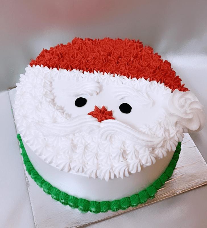 Pretty Santa Cake