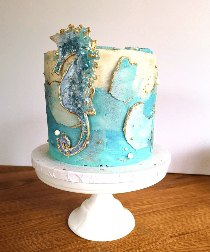 Magnetic Seahorse Cake