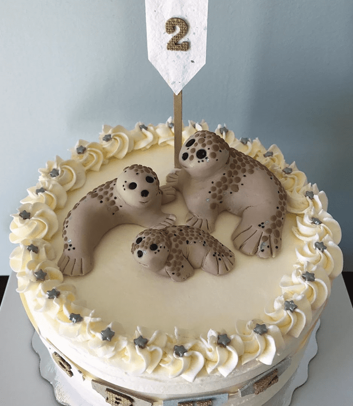 Magnetic Seals Cake