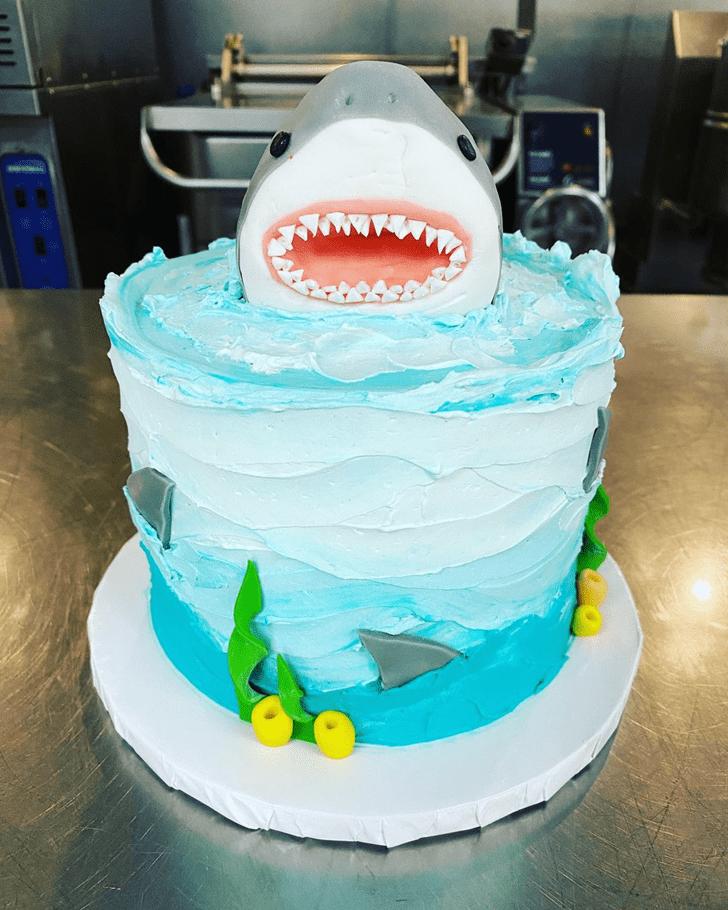 Excellent Shark Cake