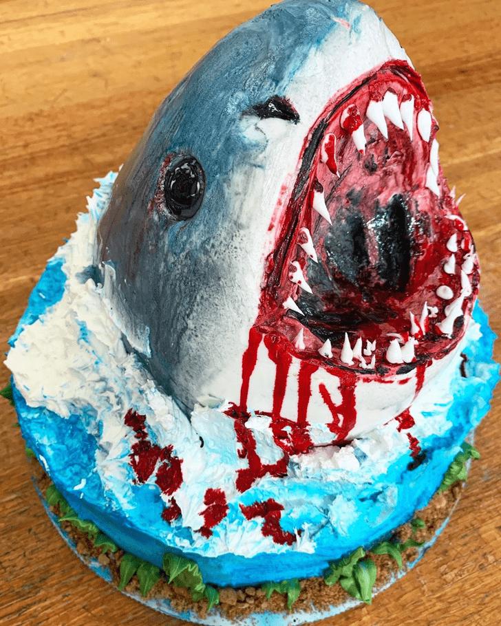 Fetching Shark Cake