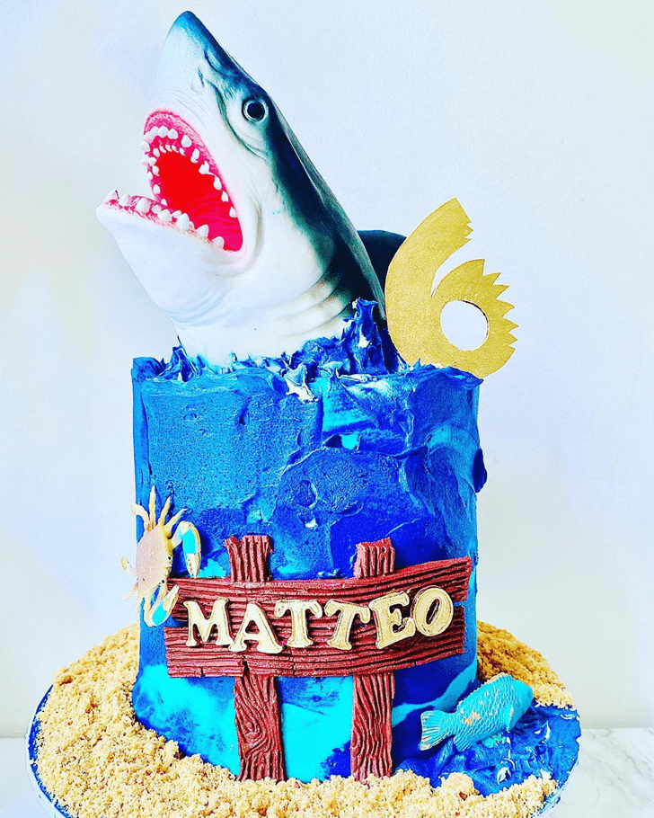 Graceful Shark Cake