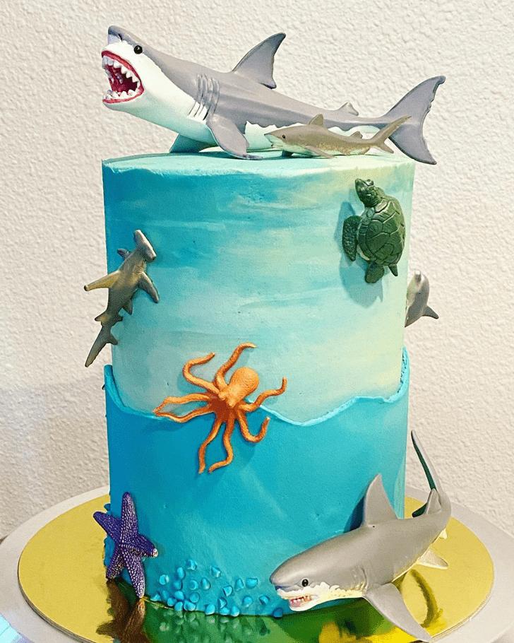 Handsome Shark Cake