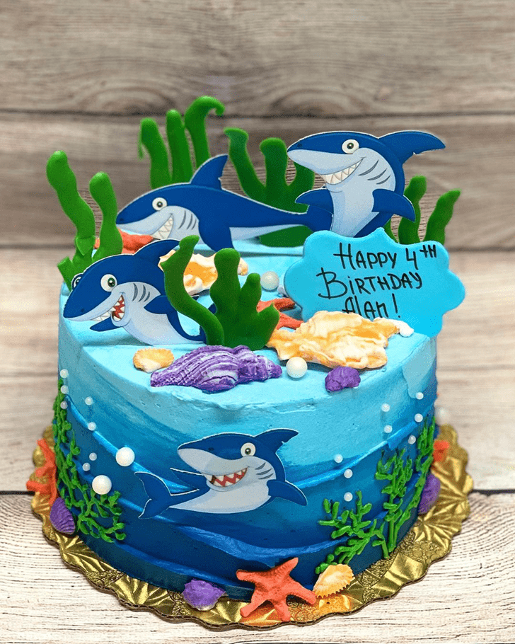Ideal Shark Cake