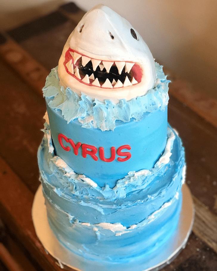 Magnetic Shark Cake
